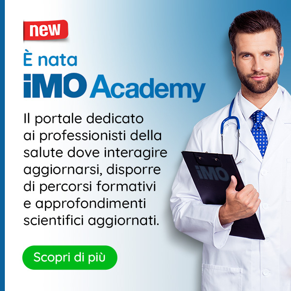 IMO Academy