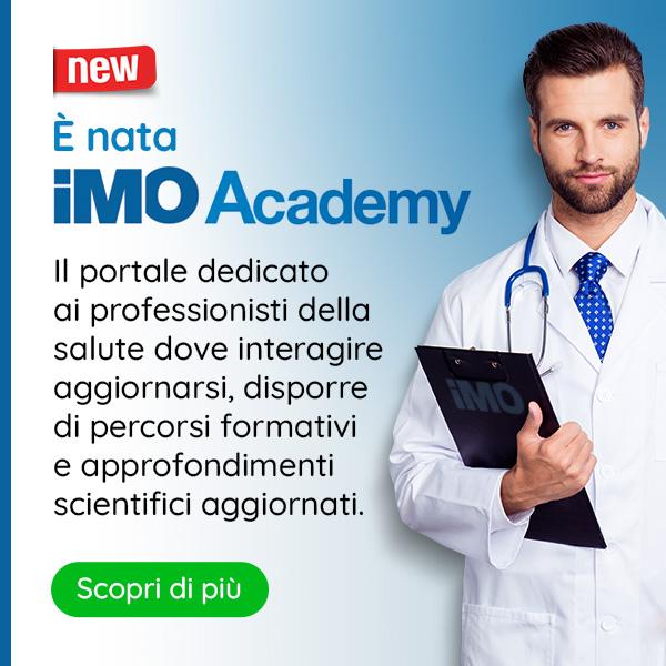 IMO Academy
